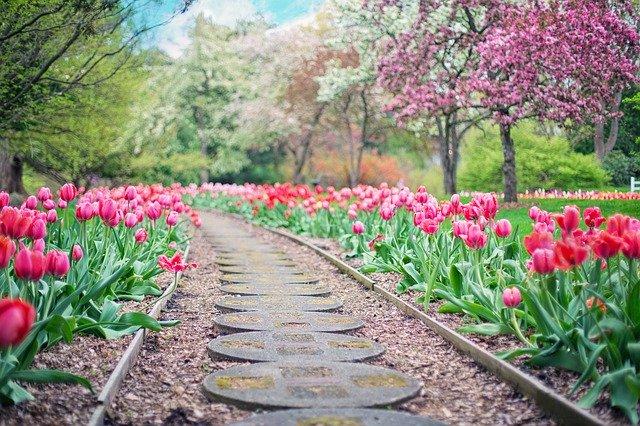 co robic w ogrodzie na wiosne
