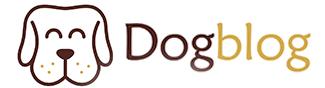 Dog Blog portal o psach